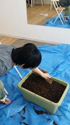 田中さん 種植え